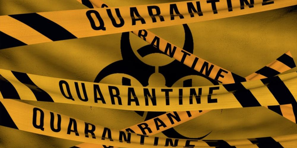 Quarantine slips
