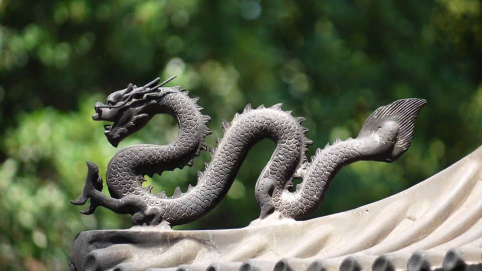 China dragón