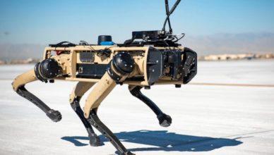 Robot perro