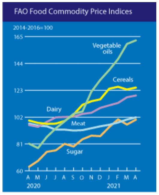 Alimentación - Inflación 2021 - 3