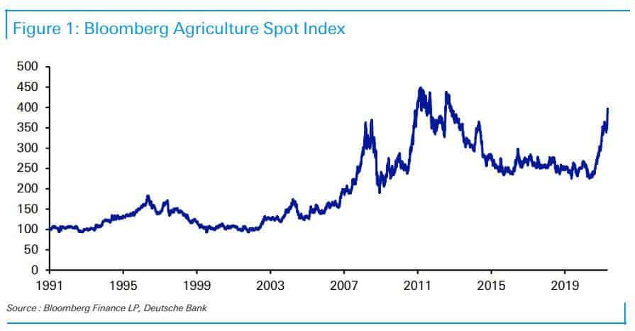 Alimentación - Inflación 2021 - 6